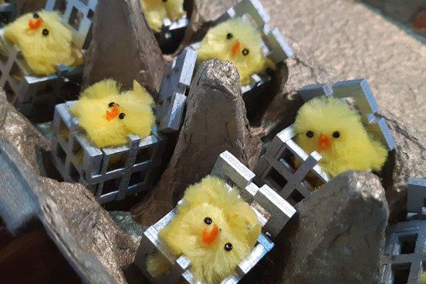 cage-eggs-4